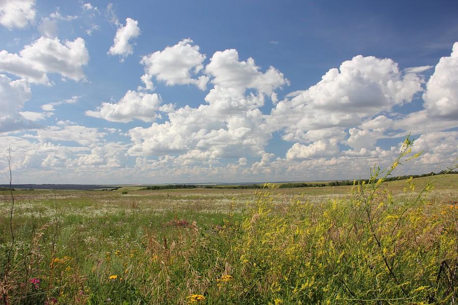 Картинки природы саратовской области