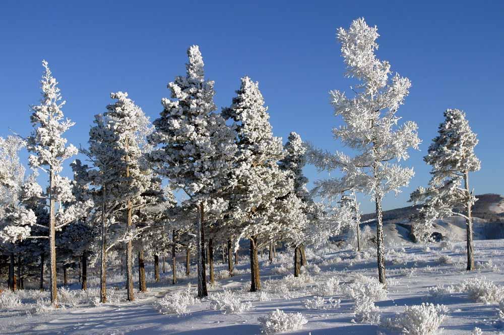 http://pics.livejournal.com/kukmor/pic/000h297q
