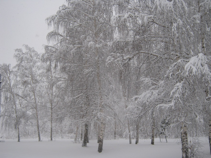 http://pics.livejournal.com/kukmor/pic/002scax1