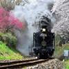 Паровоз из Хитоёси (Кумамото)