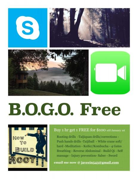 BOGO Poster copy