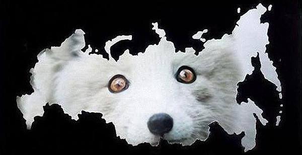 Рубль скоро рухнет.