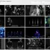 KAT-TUN - CONNECT & GO PV (Kara + Engsub) (Preview)