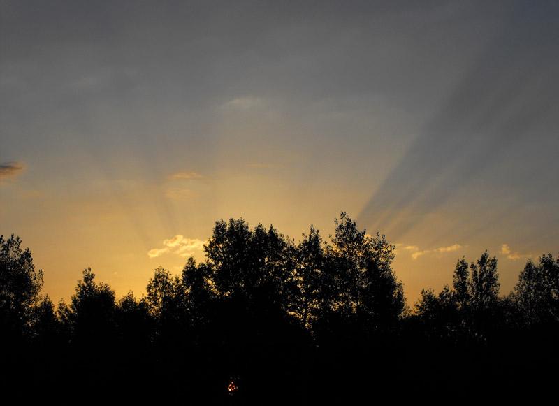 рассвет на Десне