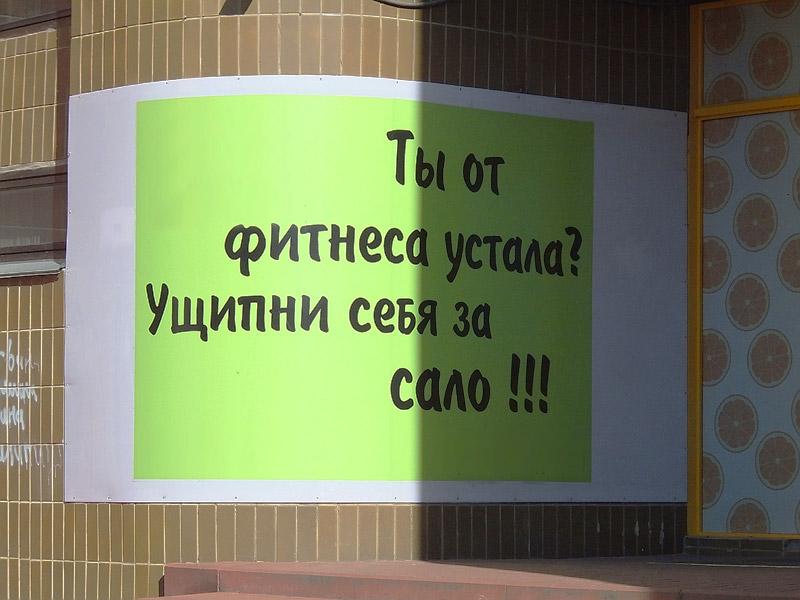http://ic.pics.livejournal.com/kurgypster/36317100/317364/317364_original.jpg