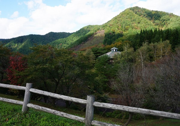 Лес7_Тадзава2.jpg