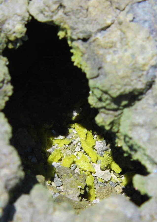 В трещине видны кристаллики серы.