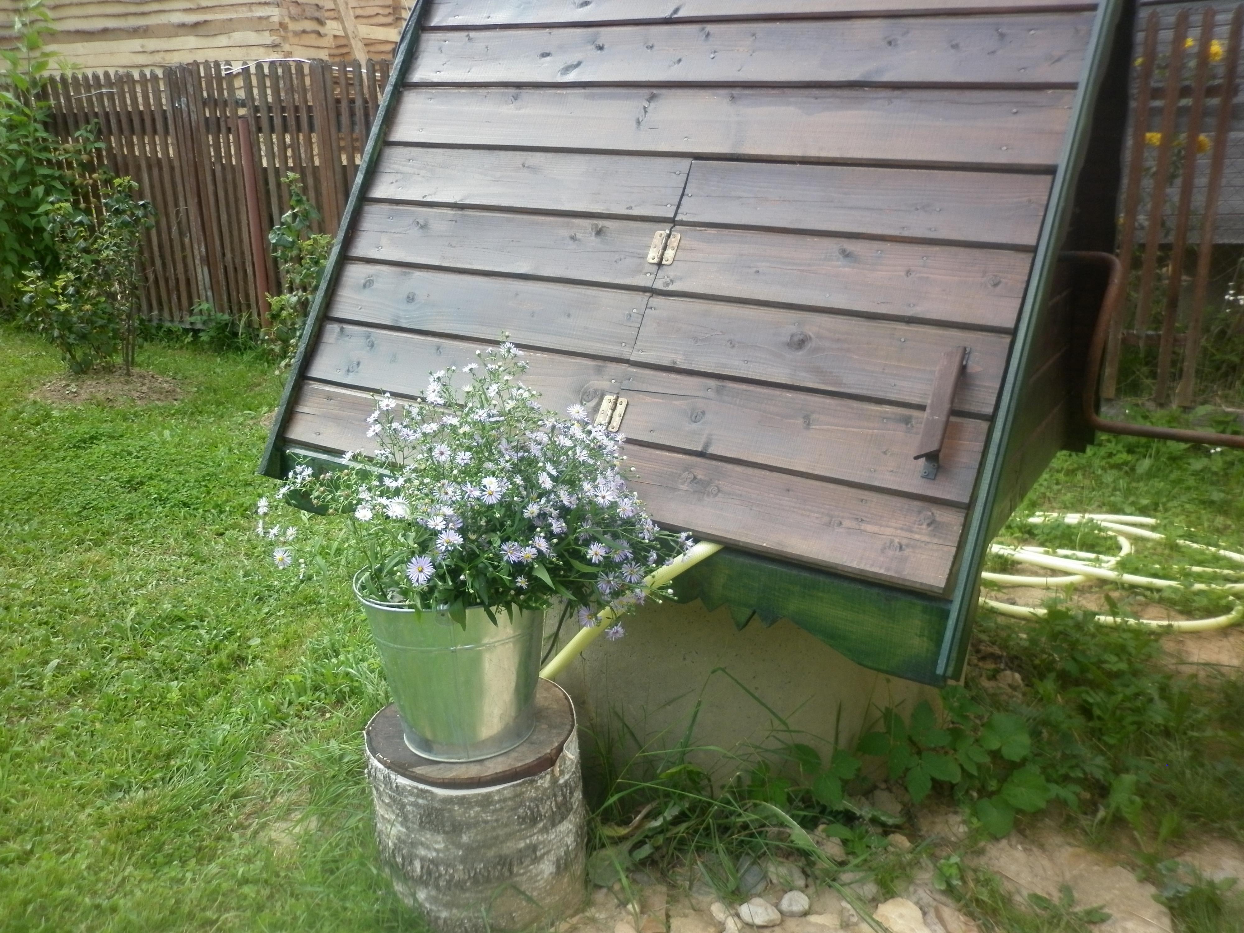 цветы у колодца