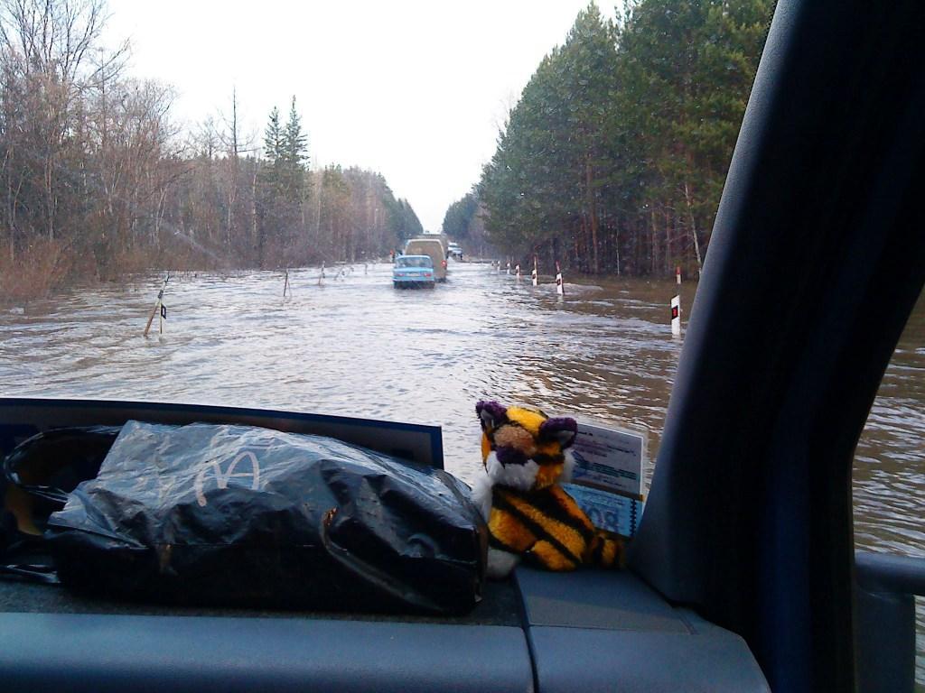 потоп в томске