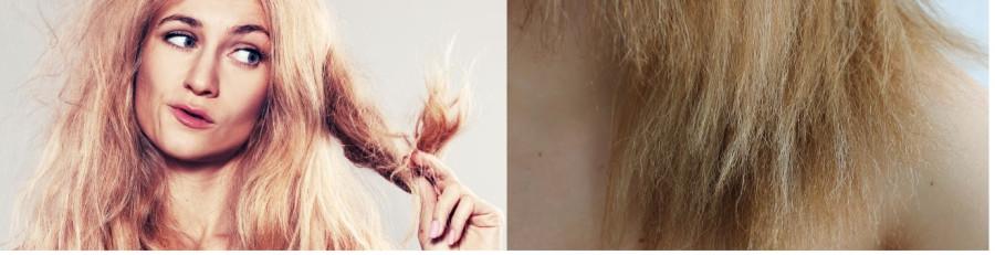 Dry-Brittle-Hair