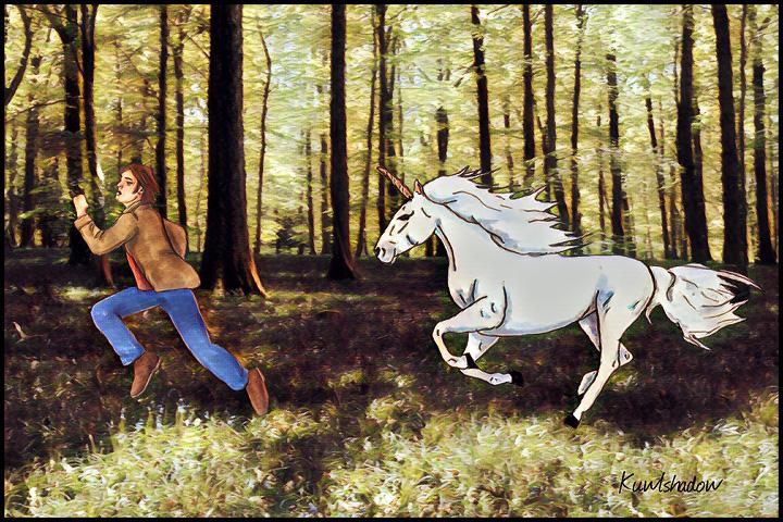 OhSam_unicorn2017.jpg