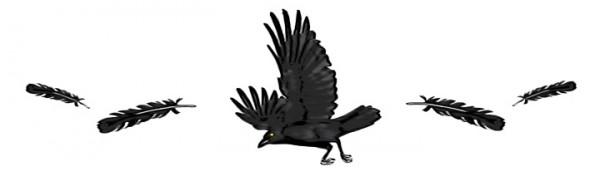 Icon_Crow_large