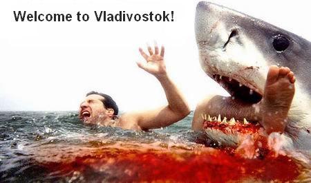 Shark-vlad