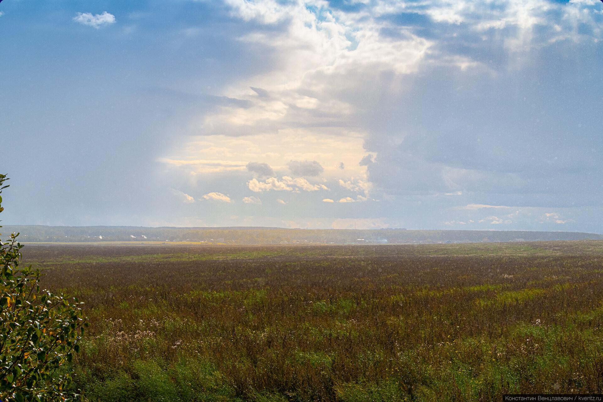 Грибной дождь в полях под Домодедово