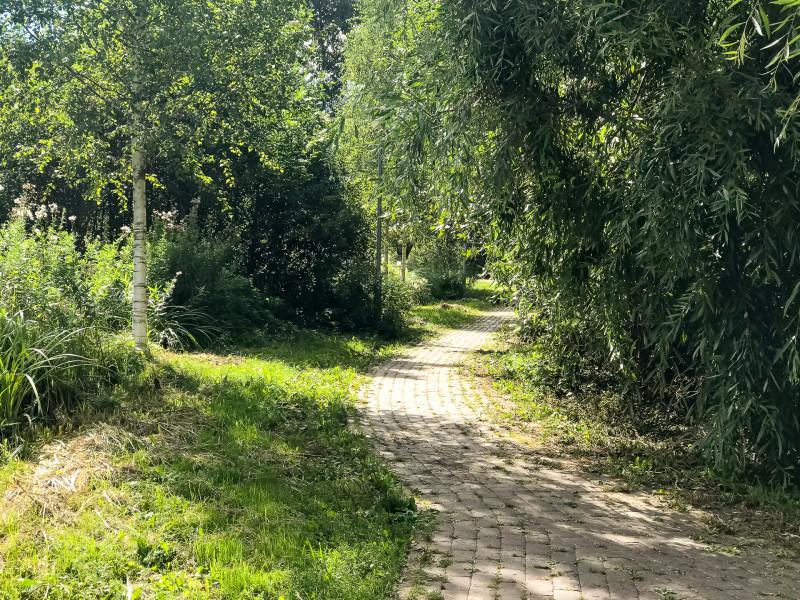 07. Некоторые дорожки кажутся совсем запущенными, но это не так: как минимум окашивают траву вдоль дорожек.