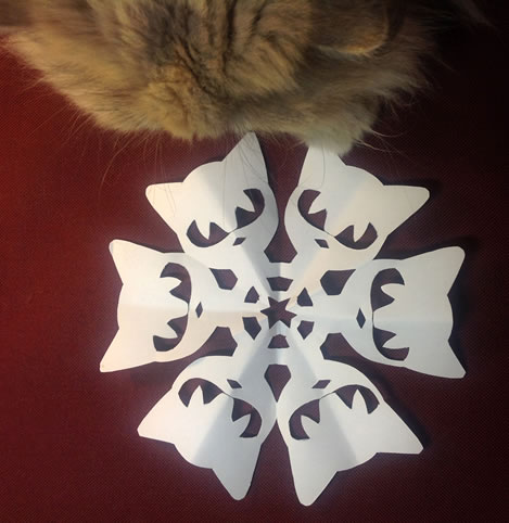 2014-12-21-cat-simple-photo[1]