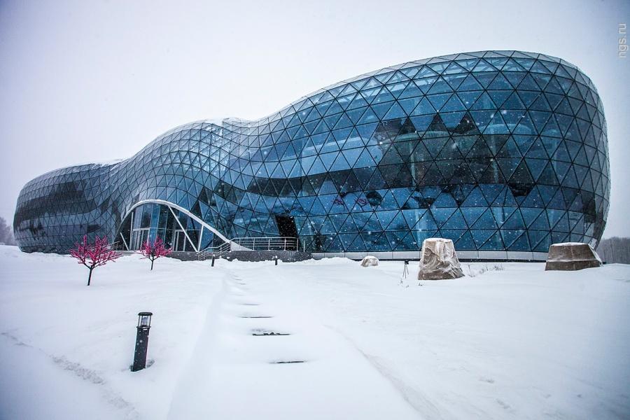 Новосибирск Био Технопарк Кольцово