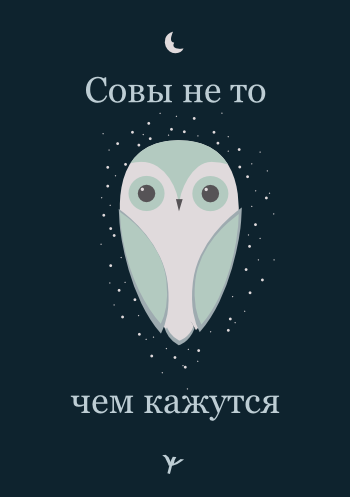 2014-09-04-owl