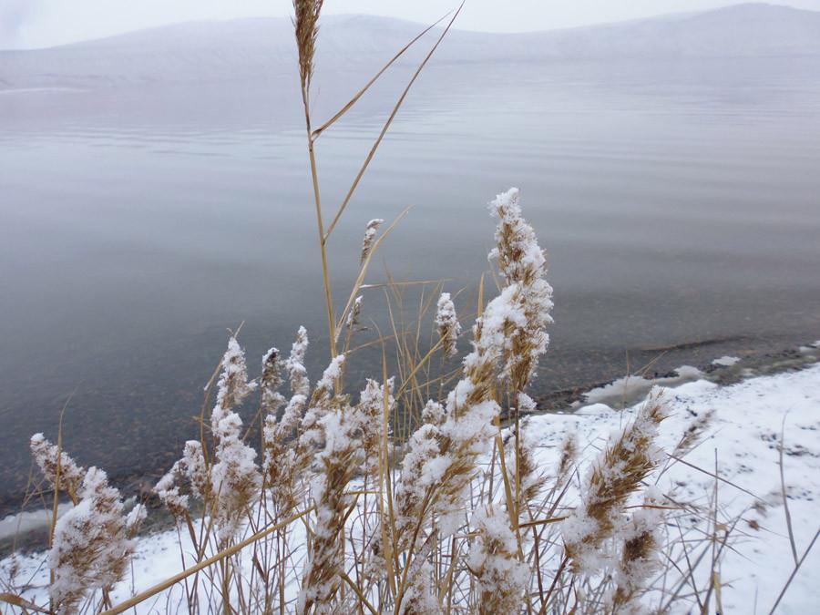 Озеро Учум в начале зимы P1030735
