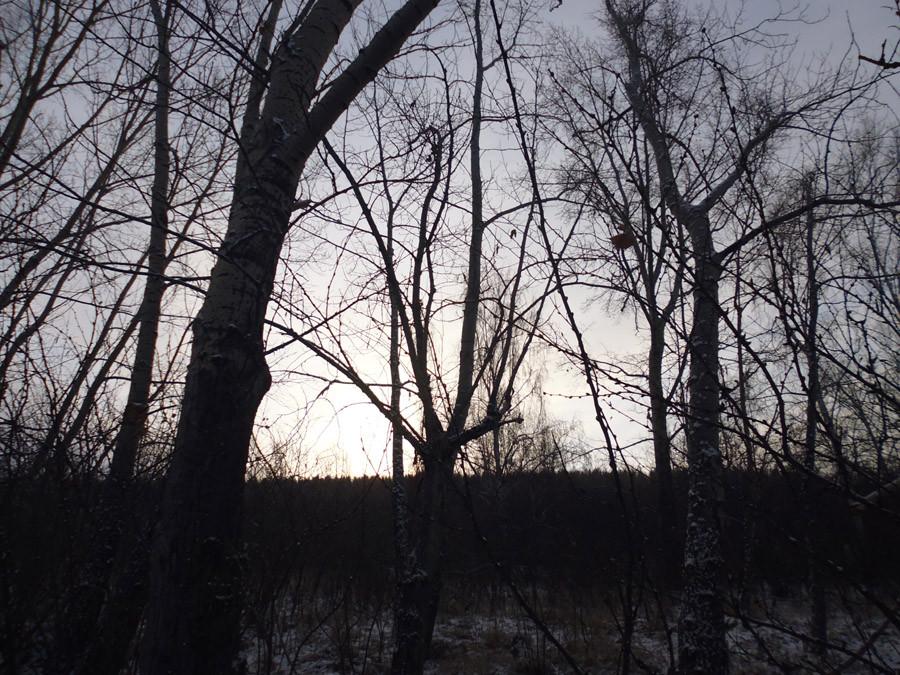 Озеро Учум в начале зимы P1030760