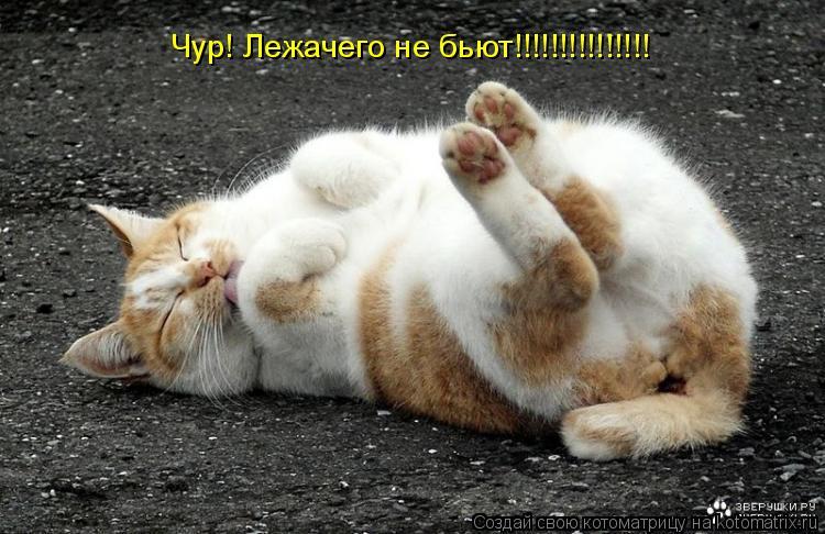 100830731_large_VK