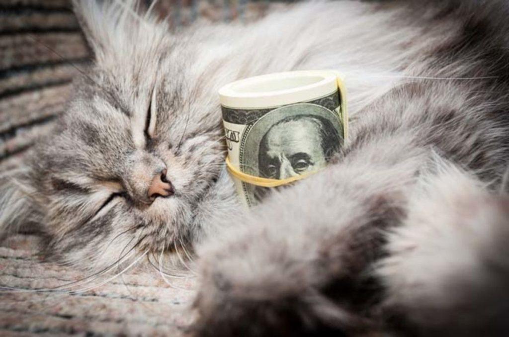 к-чему-снится-куча-денег-1024x678