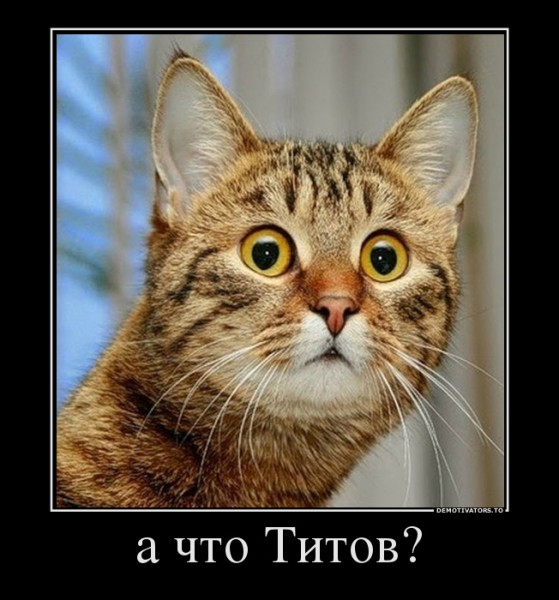176075_a-chto-titov_demotivators_to