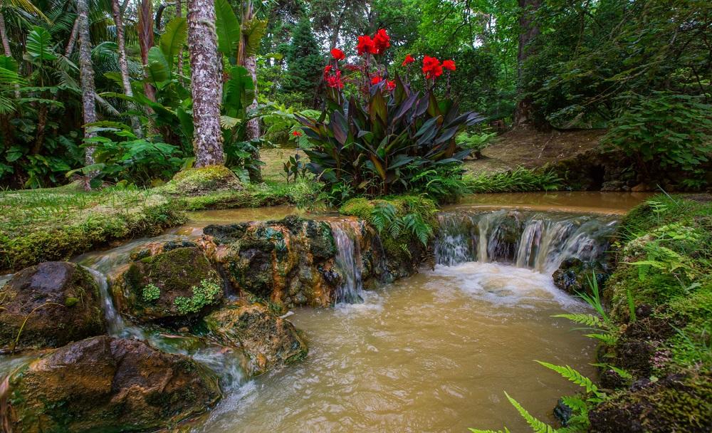 01. Ilha Verde - Зеленый остров