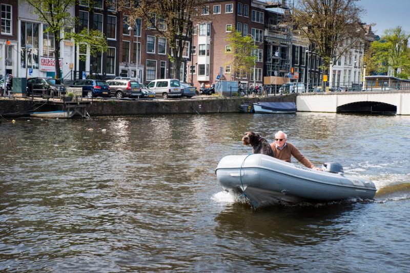 09. Пойду, пожалуй, с собакой на канале поплавую, дорогая …