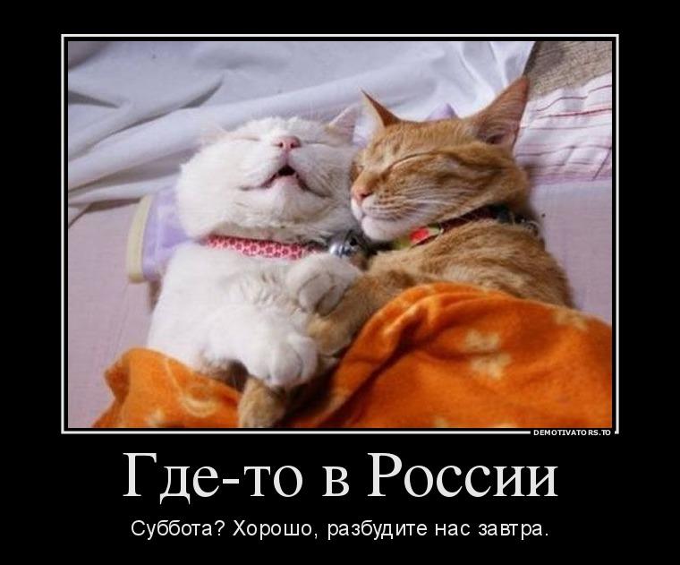 404532_gde-to-v-rossii_demotivators_to