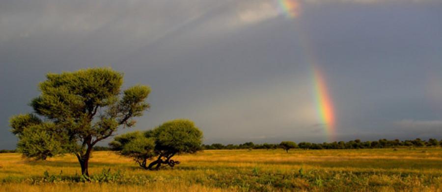 01.Есть в Северной Провинции Южной Африки городок под названием Hotazel