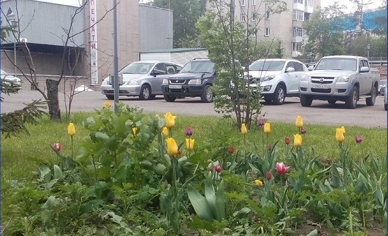 05. бедные сибиряки припарковались..