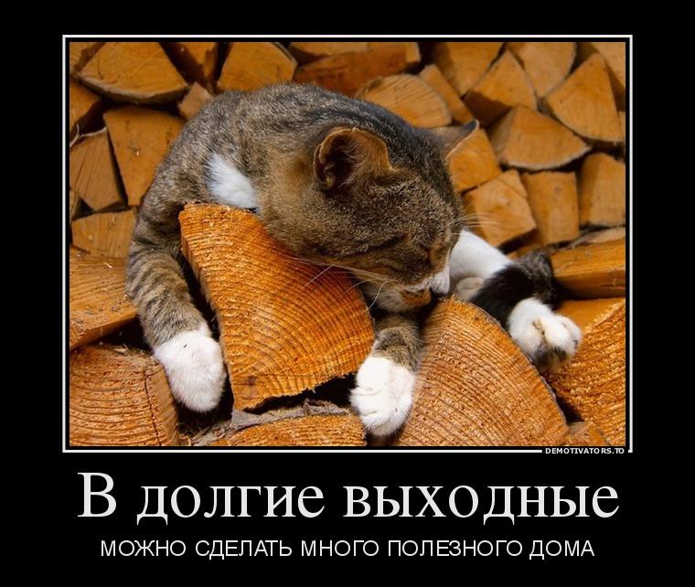 02.11-v-dolgie-vyihodnyie_demotivators_to