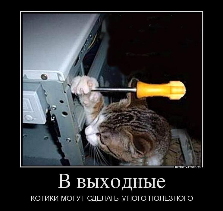 91276_v-vyihodnyie_demotivators_to