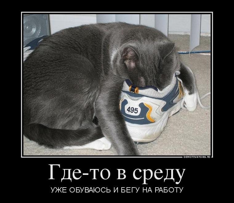 12.11_gde-to-v-sredu_demotivators_to