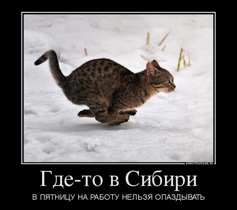 14.11_gde-to-v-sibiri_demotivators_to
