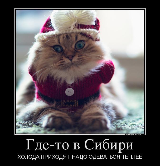 864098_gde-to-v-sibiri_demotivators_to