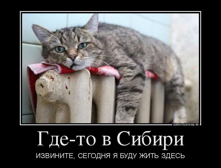 25.11_gde-to-v-sibiri_demotivators_to