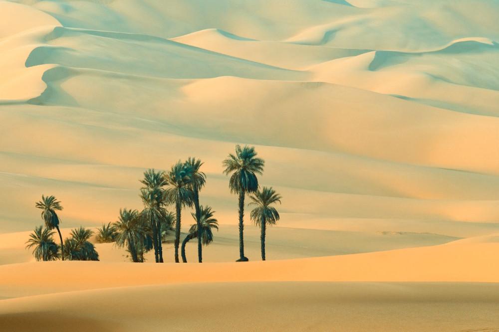 03 пустыни