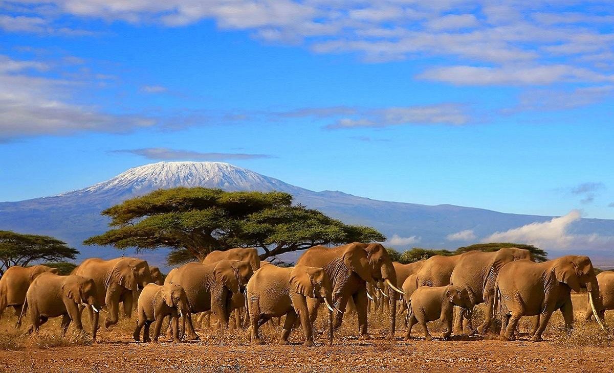 Фоторепортаж: Танзания - далёкая и невыразимо прекрасная африканская страна 01