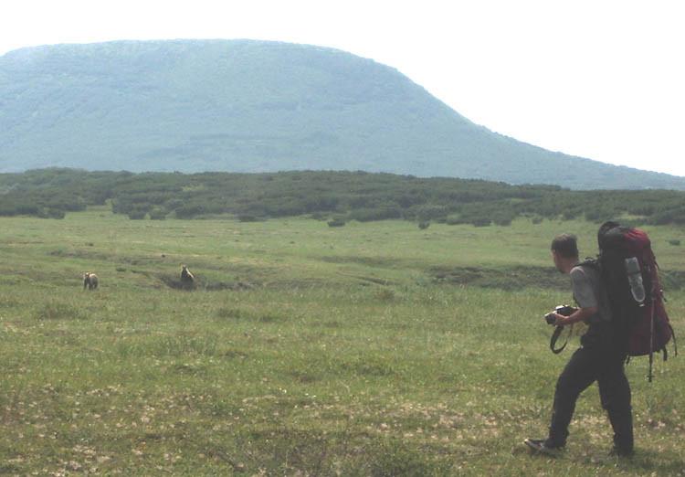 07-фотограф с медведем