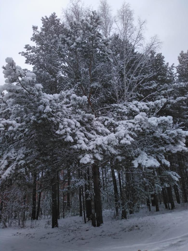 Пришла зима в посёлок Подгорный 32