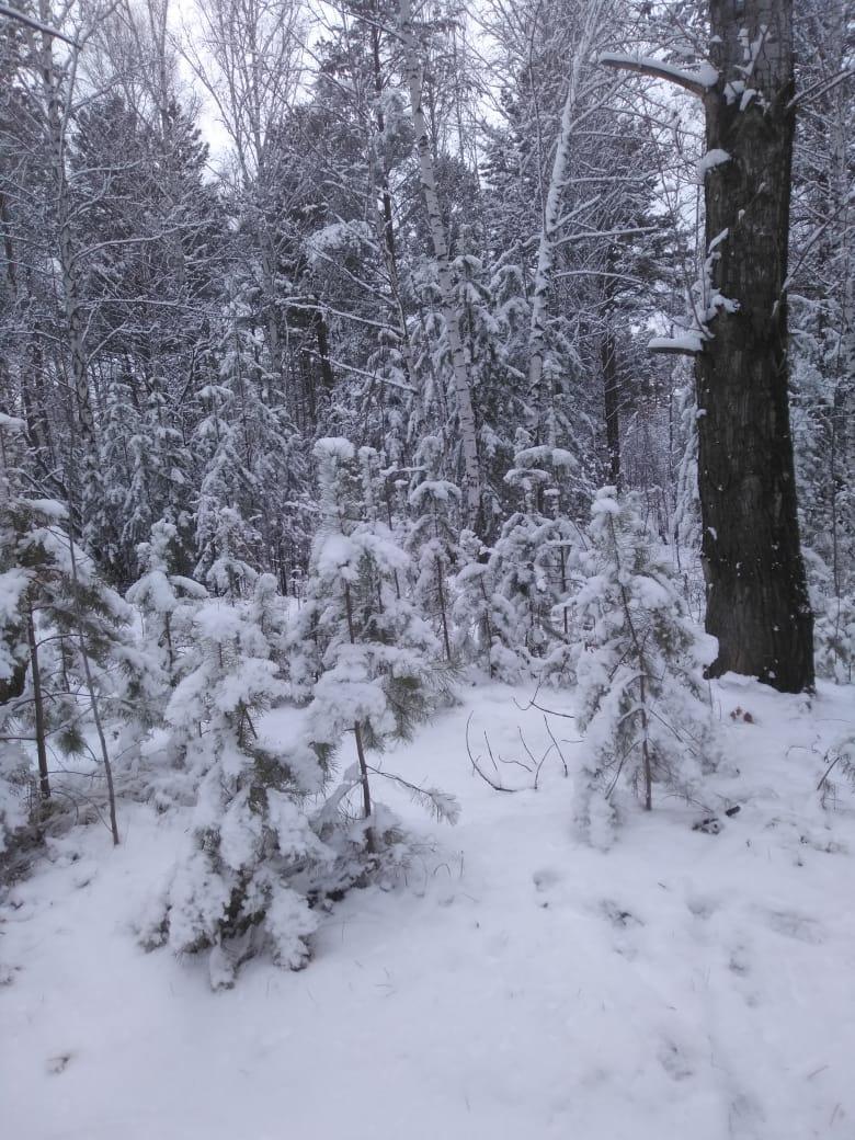 Пришла зима в посёлок Подгорный 34