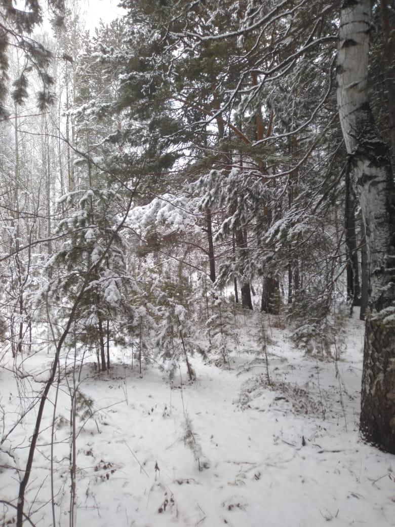 Пришла зима в посёлок Подгорный 38