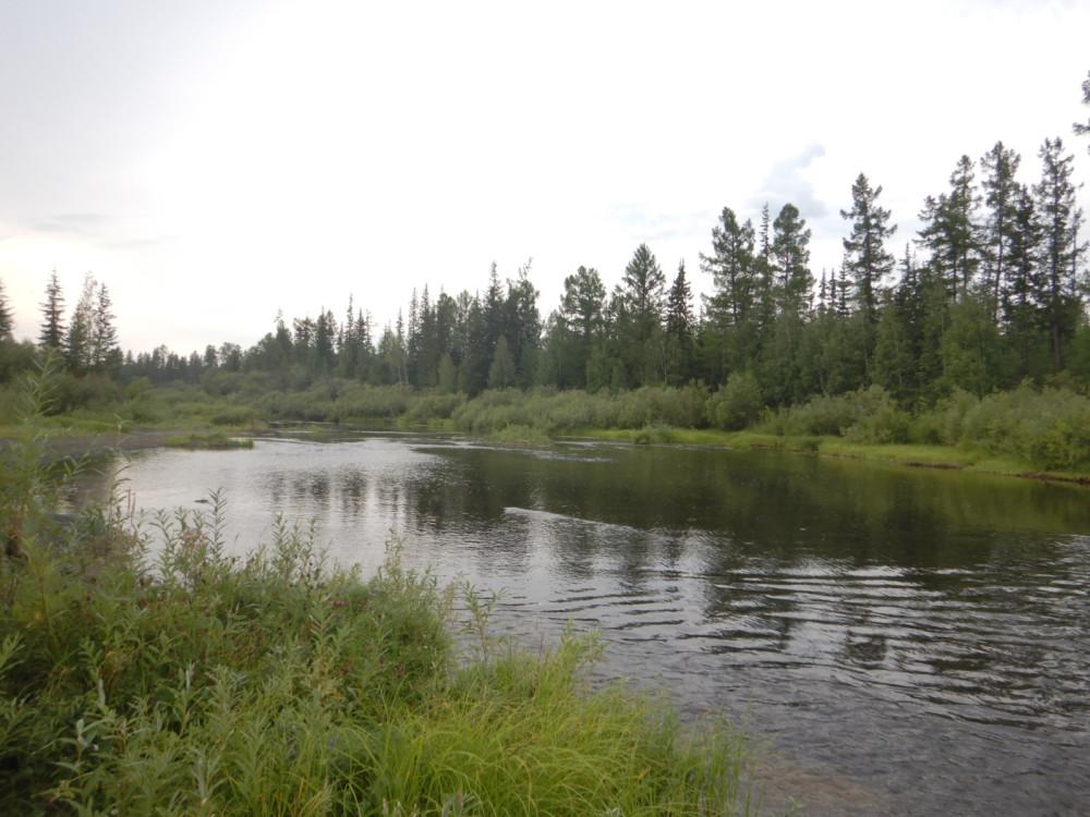Река Ванаварка летом на севере Красноярского края 07