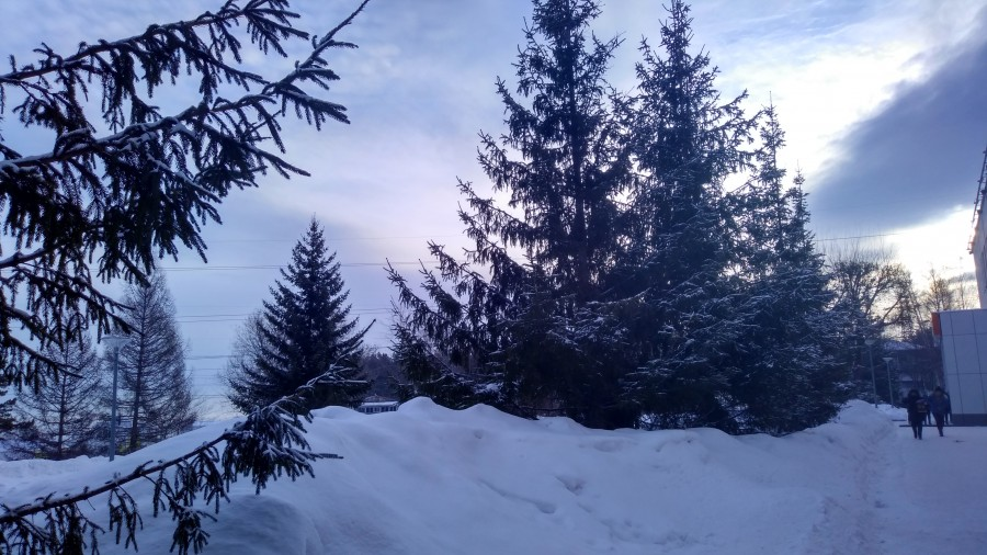 После снегопада в Красноярске 22