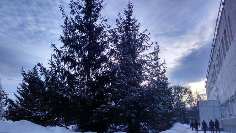 После снегопада в Красноярске 23