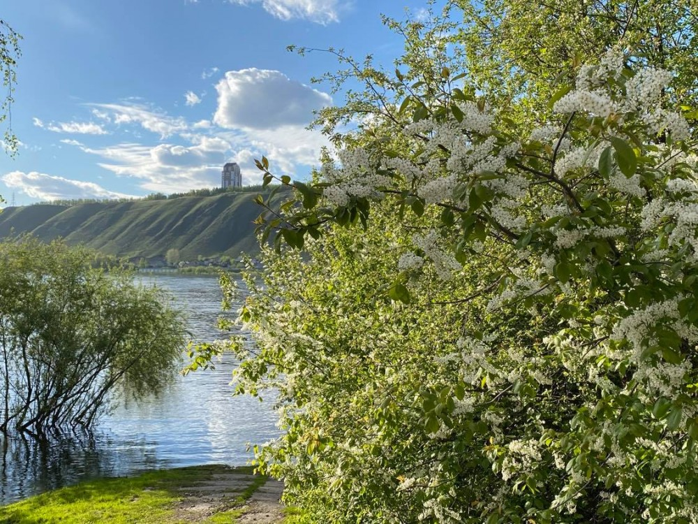Прогулка по берегу реки Енисей на окраине Красноярска 18