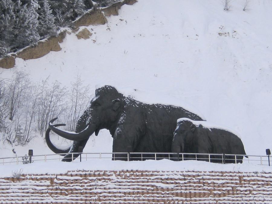 Археопарк в Ханты-Мансийске. Вспоминаем зимние прогулки IMG_3580