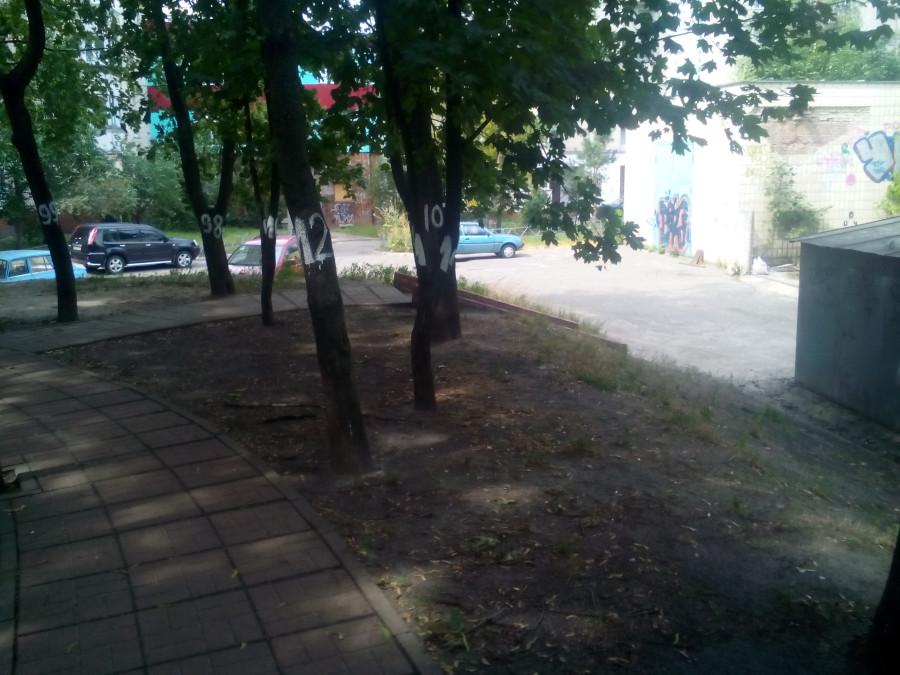 Обыски у мэров Бучи и Ирпеня прошли в рамках дела о хищении 890 га леса, - Луценко - Цензор.НЕТ 8537